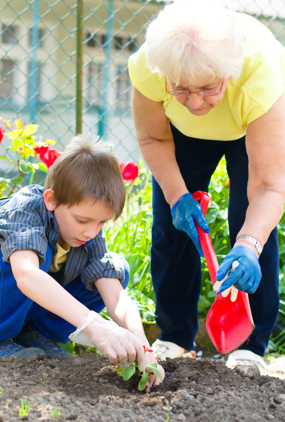Grandmother and grandson planting flowers